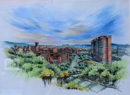 体育馆的晨雾,近日,由景德镇陶瓷大学学子手绘的五十余副校园风景画在