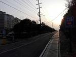 宜丰又一条自行车专用道春节前投入使用 - 体育局
